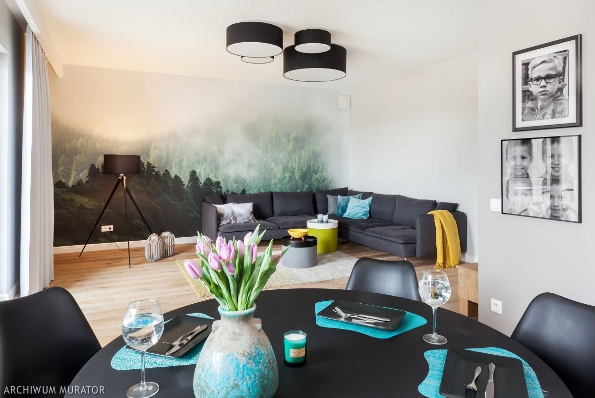 Kanapy i sofy: meble wypoczynkowe do salonu. Kanapa: wygodne umeblowanie salonu
